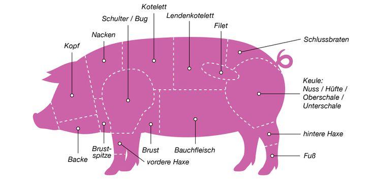 Grafik der Cuts vom Schwein
